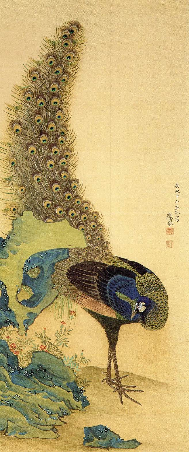 picture of Peacock by Maruyama Ōkyo